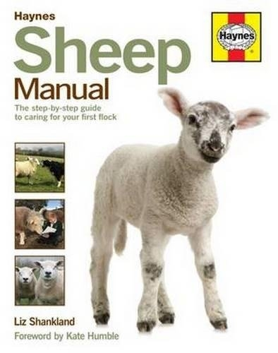 Sheep Manual - The Complete Step-by-Step Guide to Caring for Your Flock by Haynes