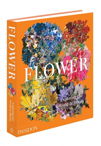 Flower: Exploring the World in Bloom by Phaidon Editors, Anna Pavord
