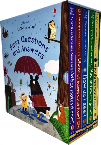 Usborne Lifttheflap First Questions and Answers 5 Books ...