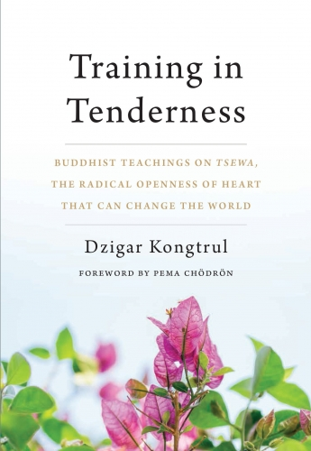Training In Tenderness - Buddhist Teachings on Tsewa the Radical Openness of Heart That Can Change the World by Dzigar Kongtrul