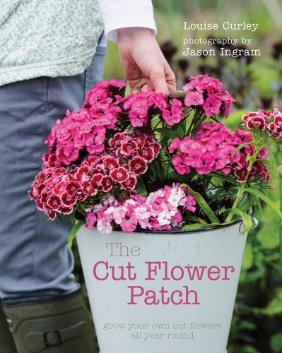 The Cut Flower Patch: Grow your own cut flowers all year round by Louise Curley