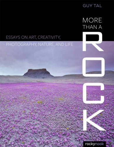 More Than a Rock by Guy Tall
