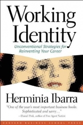 Working Identity: Unconventional Strategies for Reinventing Your Career Photo