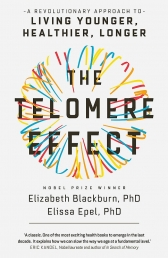 The Telomere Effect Photo
