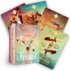The Spirit Animal Oracle: A 68-Card Deck and Guidebook Photo