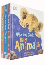 Hide and Seek 3 Books Collection Set (Pets, Baby Animals & Puppies) Photo