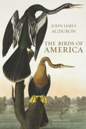 by John James Audubon