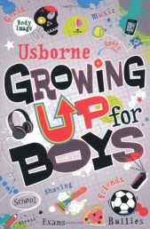 Usborne Growing Up For Boys schools bullies, music sports girls stress by Usborne