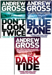 Andrew Gross 3 Books Collection Pack Set by Andrew Gross