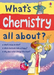 Usborne Science Book What's Chemistry all About Photo