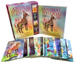 The Animal Wisdom Tarot Deck Cards Collection Box Photo