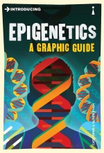 Introducing A Graphic Guide Series 6 8 Books Collection Set Epigenetics,Genetics,Infinity,Relativity,Evolution, Stephen Hawking, Empiricism, Kant by Various